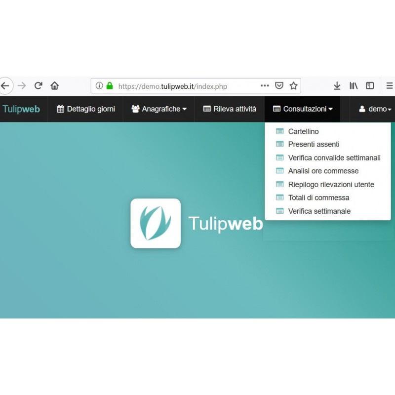 Software Presenze Tulip Web