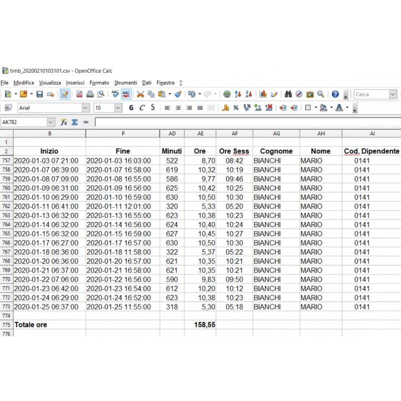 Presenze Web Ore lavoro Excel