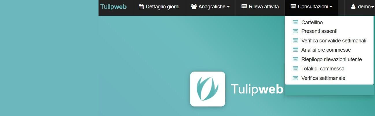 Tulip Web Presenze